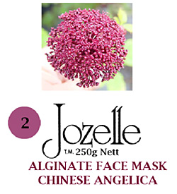 2.JOZELLE ALGINATE FACE MASK 250g / CHINESE ANGELICA-FOR PIGMENTED SKIN