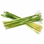 JOZELLE LEMON GRASS PURE OIL 15ML