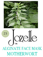 23.JOZELLE ALGINATE FACE MASK 1KG /MOTHERWORT-STRENGTHENS & RE-ENERGISES SKIN