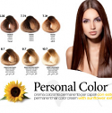 PERSONAL COLOR - HAIR COLOR TINT CHART